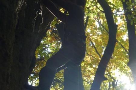 2012_10_20_klettertag_58
