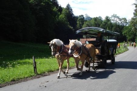 2011_08_camp_weilheim_152